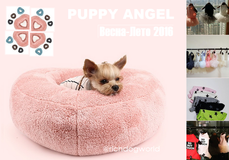 Стильная и удобная одежда для йорков из интернет-магазина puppy